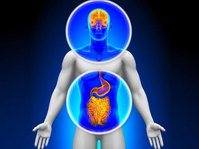 intestino e psiche