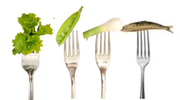 Educazione Alimentare In Mensa Come Fare Foodinsider It